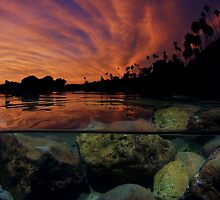 Sunset Laguna Beach by Dale  Kobetich