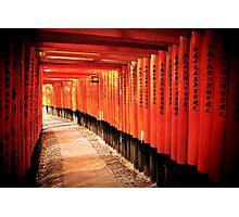 Fushimi-Inari Shrine Photographic Print