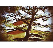 Kinkakuji Temple Photographic Print