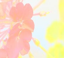 Pink and yellow floral by by-jwp