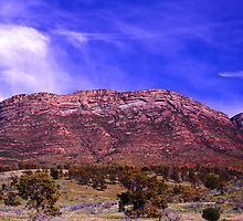 Flinders Ranges by Gwynne Brennan