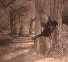 Still Air - Blackbird in the Park by Nestor