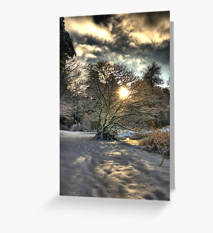 A county Down Winter Scene Greeting Card