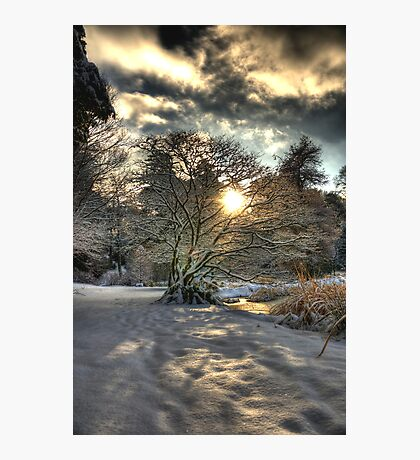 A county Down Winter Scene Photographic Print