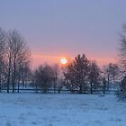 Winter Sunrise by ienemien