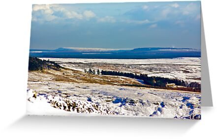 Winter on the North Yorks Moors by Trevor Kersley