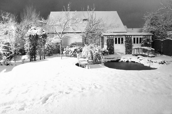 Garden Snow in England by Mike Paget