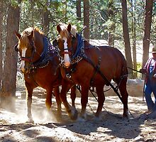 Hauling logs! by Nancy Richard