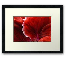Geranium Red Abstract Framed Print