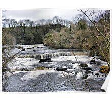 Aysgarth Falls . Poster