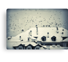 Winter roofs Canvas Print