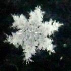 Hey,Pretty Little Snowflake by MaeBelle