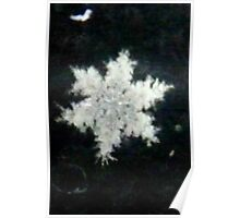 Hey,Pretty Little Snowflake Poster