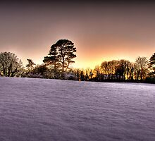 Winter Wonderland by Parnellpictures