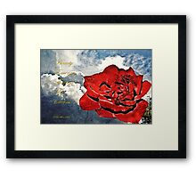 Beauty Emerges Framed Print