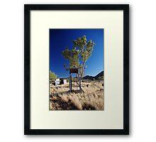 Bush Shower  Framed Print