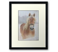 Winter Horse  - JUSTART © Framed Print