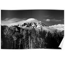 Mt Rainer  Poster