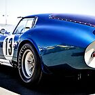 Shelby Cobra Racing Car by Roi  Brooks