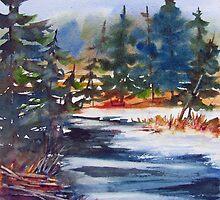 Algonquin Winter  (Ontario, Canada) by bevmorgan