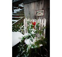 Antiques & Old Stuff for Christmas Photographic Print