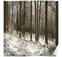 Snow Still Poster