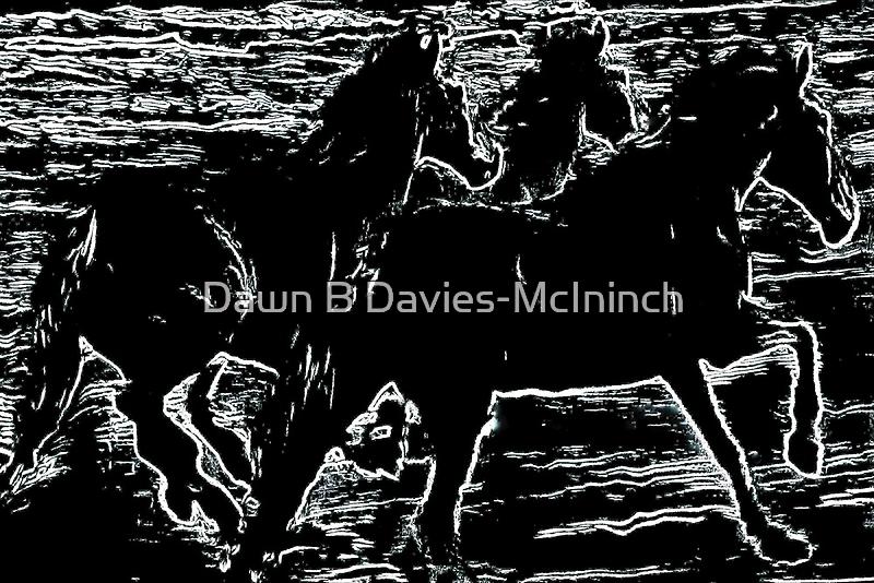 Moonlight Equines by Dawn B Davies-McIninch