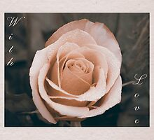 Vintage Rose - With Love by RaggedRose Photography