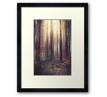 This isn´t yours Framed Print