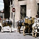 Donkey delivery by Alex Howen