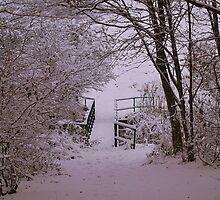 Snowbridge by Stan Owen