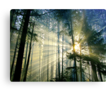 Behold The Light! Canvas Print