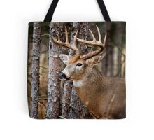 White-Tailed Buck Tote Bag
