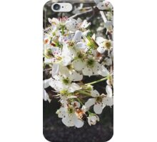 Bumblebee on White Flowers iPhone Case/Skin