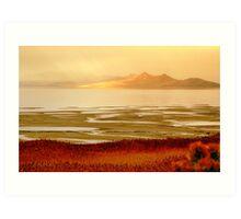 Impressions of Great Salt Lake  Art Print