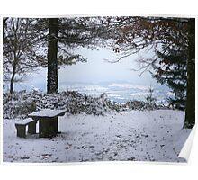 Walking in Winter Wonderland - Haldon Forest, Devon. Poster