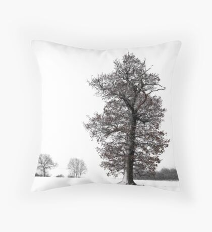 Bishops field Throw Pillow