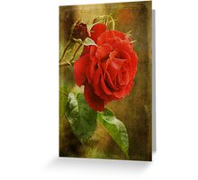 A Rose is a Rose... Greeting Card