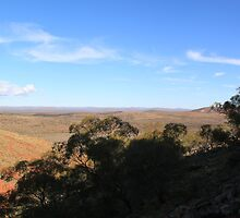 Gawler Ranges by Cheryl Parkes