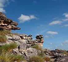 Rocky terrain by georgieboy98
