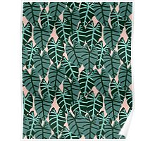 Alocasia indoor house plant hipster watercolor plant pattern botanical leaves green painting home decor dorm college  Poster