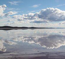 Lake Gairdner 4 by Cheryl Parkes