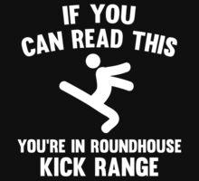 Roundhouse Kick Range by AmazingVision