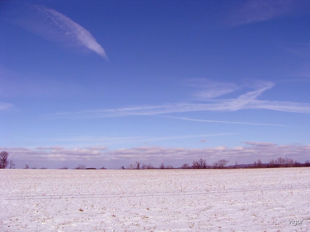 winter scene by vigor
