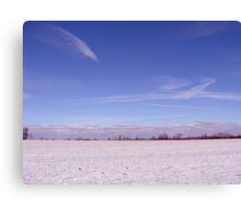 winter scene Canvas Print