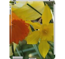 Daffodils of different sizes -  iPad Case/Skin