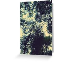 Trees under the sky Greeting Card