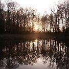 River in Winter by Valarie Napawanetz