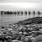 Rocky Beach by laurie13