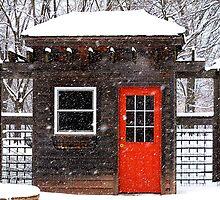 The Orange Door by Brian Gaynor